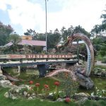 Taman Bukit Bougenville, Taman Bunga di Singkawang